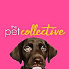 The Pet Collective | Youtube