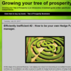 Growing your tree of prosperity