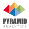 Pyramid Analytics - Business Intelligence and Data Analysis Insights