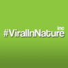 Viral In Nature - Canada's Award Winning Social Media Agency