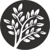 The Essence of Tea – Blog & News