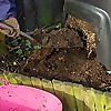 Carry on Composting