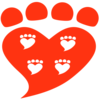 Companion Animal Psychology