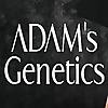 Adam's Genetics