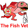 The Fish Vet's Blog