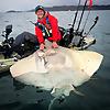 Cornish Kayak Angler