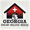 Georgia English Bulldog Rescue