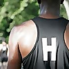 New York Harriers Blog
