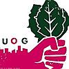 Urban Organic Gardener   Urban Gardening Blog