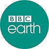 BBC Earth | Youtube