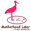 Motherhood Later | Midlife Parenting