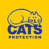 Meow! Blog   Cats Protection