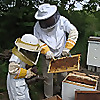 Cherokee Beekeepers Association