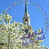 River Road Church, Baptist, Richmond,VA | Pastor's Blog