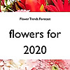 Flower Trends Forecast | Youtube