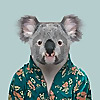Queensland Blog - Travel ideas, itineraries & more
