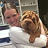 Dr. Jen's Dog Blog