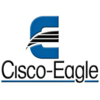 Cisco-Eagle | Warehousing Insights
