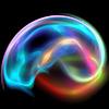 The Neuropsychotherapist | Neuroscience Psychotherapy Blog