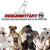Dogumentary TV - #1 Channel for dog Lovers on Youtube!!!