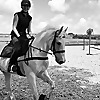 Gee Gee & Me   Equestrian lifestyle blog