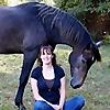 Equestrian Journey