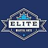 Elite Martial Arts Classes Toronto