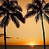 Go Visit Hawaii | Hawaii Travel Guide & Vacation Advice