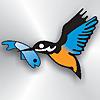 The Kingfisher Fishing