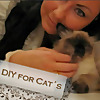 DIY for CATs by Hohentwielbirmas