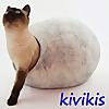kivikis. cat