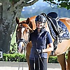 Dressage Rider Training | Online Fitness Workouts