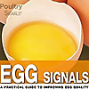 Egg Signals News