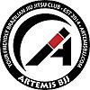 Artemis BJJ   Bristol Brazilian Jiu Jitsu