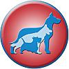 Zoomin Groomin | ECO-Friendly Pet Grooming Service