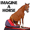 Imagineahorse - Trick Horse Training