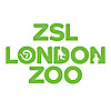 ZSL - Zoological Society of London | Youtube