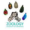 University of Cambridge   Department of Zoology