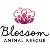 Blossom's Animal Rescue