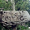 Tangly Cottage Gardening Journal