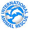 International Animal Rescue | Saving animals from suffering around the world