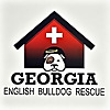 Georgia English Bulldog Rescue