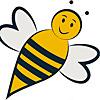 Carolina Honeybees/Beekeeper Charlotte
