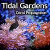 Tidal Gardens Inc.