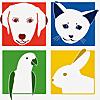 Highton Veterinary Clinic