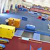 Ask Al Fong - Dragon Gymnastics