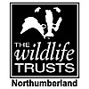Northumberland Wildlife Trust blogs
