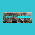 Soul Esplanade – (Travel & spread Love)