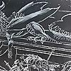 Jason C. Poole Paleontology artist