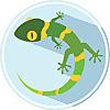 Green Gecko Lego Technic Workshop
